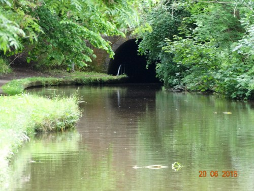 Ellesmere tunnel