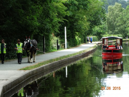 A horsedrawn boat ferries tourists along the way to the falls