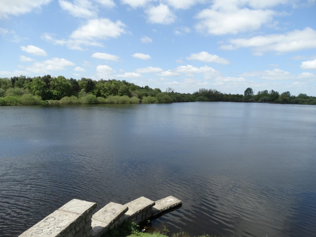 another view of the lake from the Chasewater Heath end